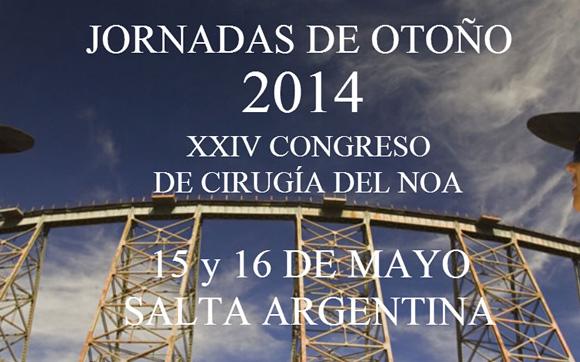 JORNADAS DE OTOÑO 2014, XXIV CONGRESO DE CIRUGÍA DEL NOA